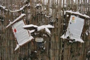 Winter im Lesegarten 2016.