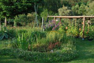 Ein Gartendetail.