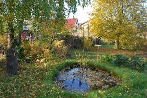 Herbst im Lesegarten. Foto: pe