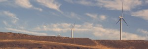 Windmills to signify sustainability needs to remain competitive