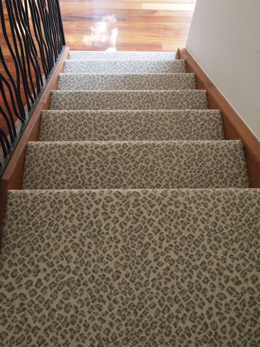 Leopard Carpet Wall To Wall : Animal print carpeting allaboutyouth