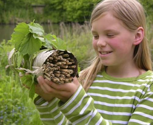 Basteln Mit Kindern Kostenlose Bastelvorlage Natur