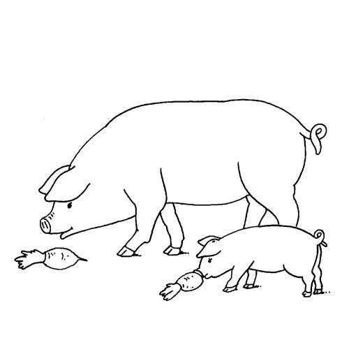 Kostenlose Malvorlage Bauernhof Schweine Auf Dem