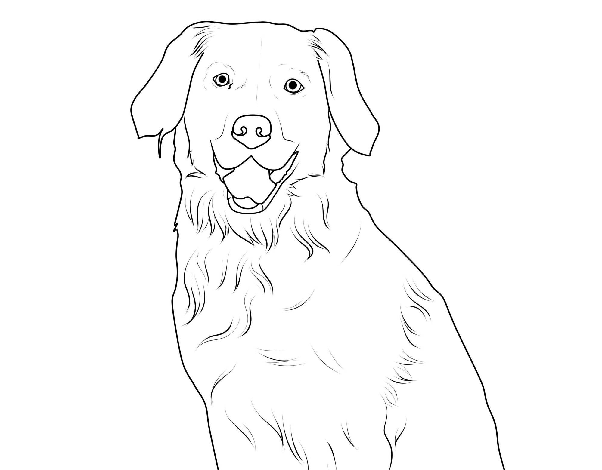 Hunde Ausmalbild Die Beste Idee Zum Ausmalen Von Seiten