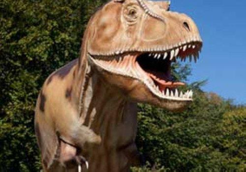 Warum Haben Dinosaurier So Komische Namen