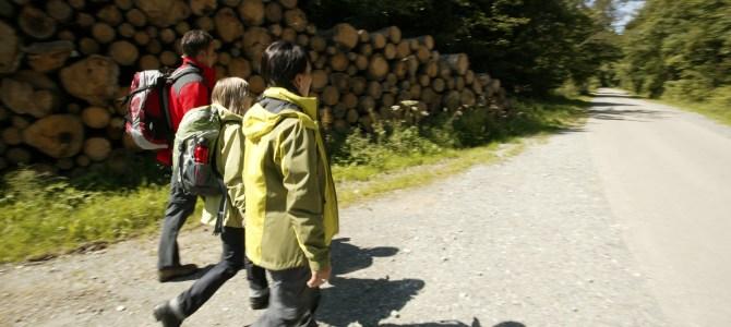 119. Deutsche Wandertrag 2019 vom 3. bis 8. Juli 2019 in Winterberg