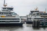 De grootste veerboten van TESO samen op één foto.