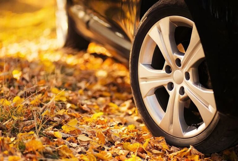 Fall Driving Dangers