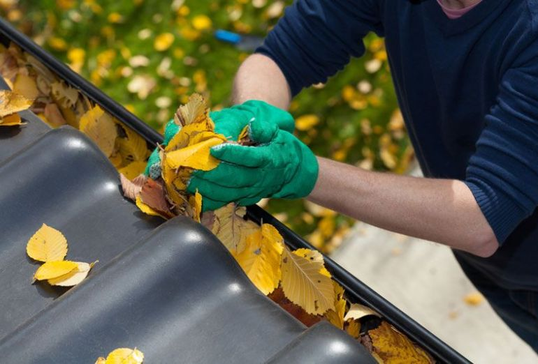 Cleaning Your Gutters for Fall