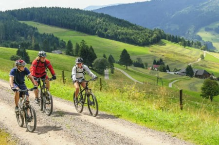 On a mountain bike in the Black Forest