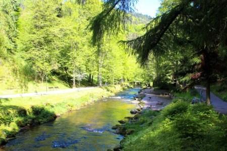 Die große Enz durchfließt Bad Wildbad
