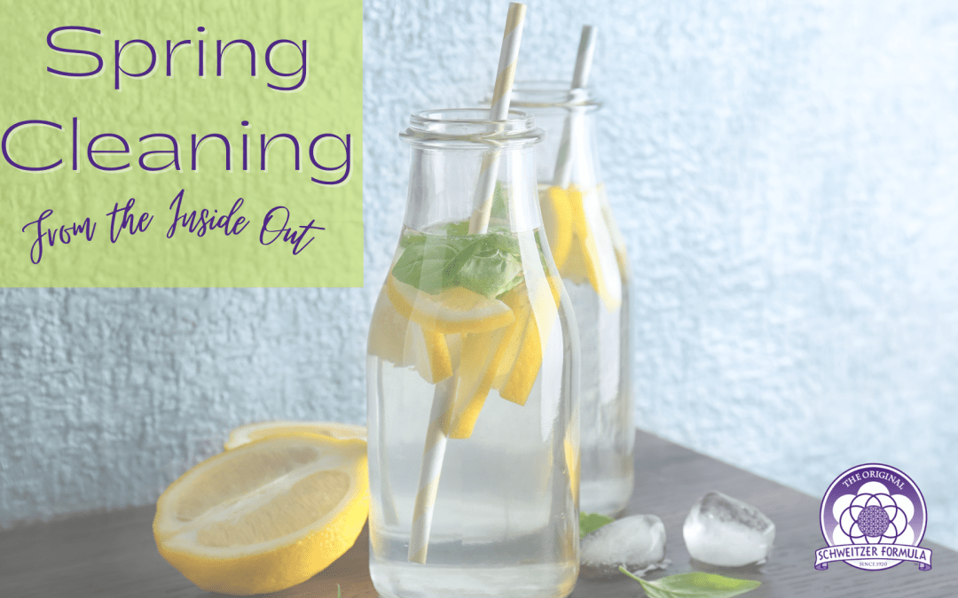 Best Detox Cleanse: Spring Cleaning From the Inside Out