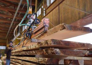 Holzproduktion in Vendlincourt: Bild: www.fagusjura.ch