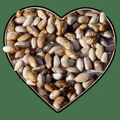 cuore di pistacchio