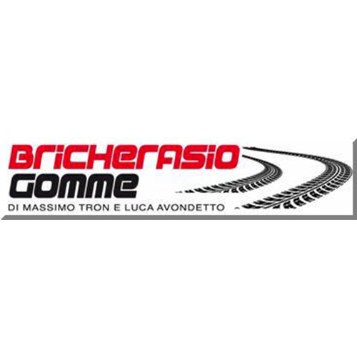 Logo Partner Bricherasio Gomme