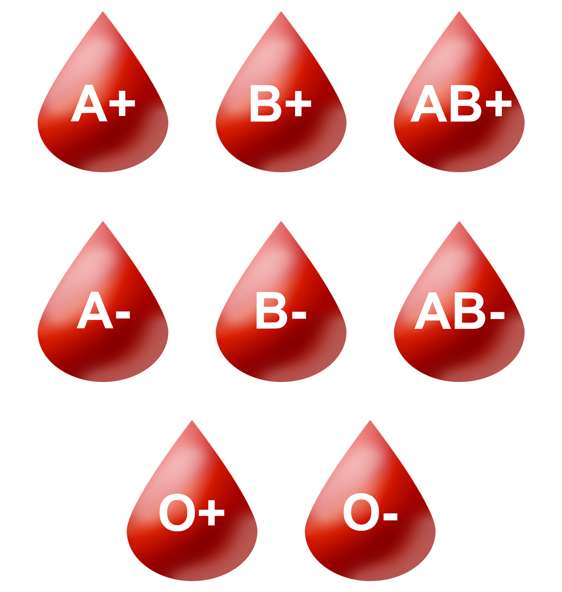 Understanding Different Blood Types