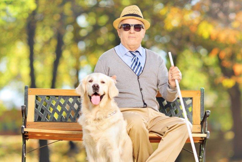 Cavalheiro cego