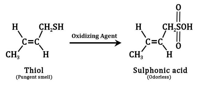 Ação de um agente oxidante em tióis presentes no spray de skunk