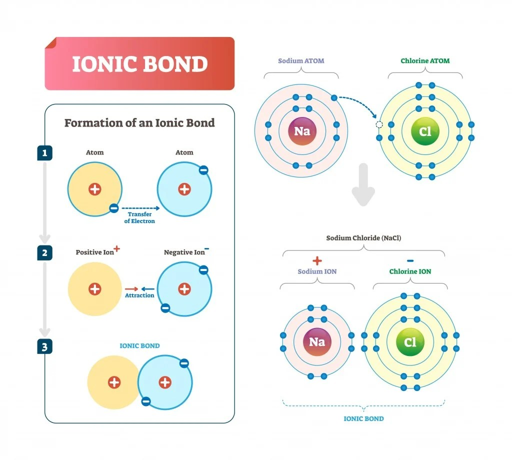 Diatomic Molecules Definition Explanation And Examples
