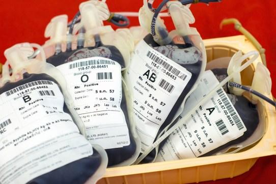 Sangue humano em armazenamento