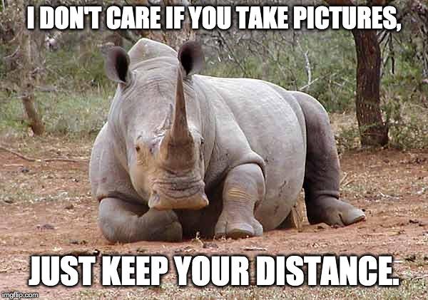 eu não me importo se você tirar fotos meme