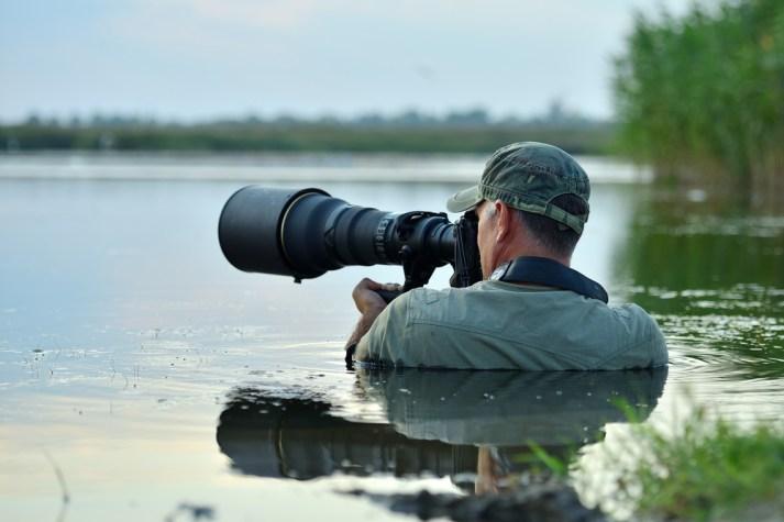 fotógrafo de vida selvagem ao ar livre, parado na água (aaltair) s