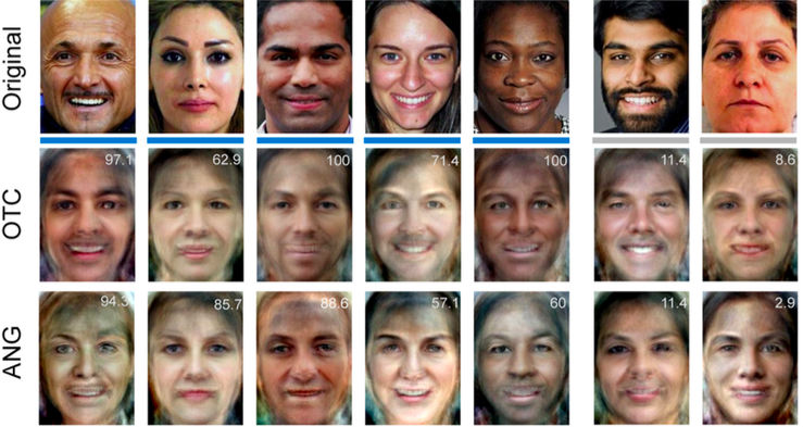 Faces seen by experimental subjects as reconstructed by fMRI data using MVPA.