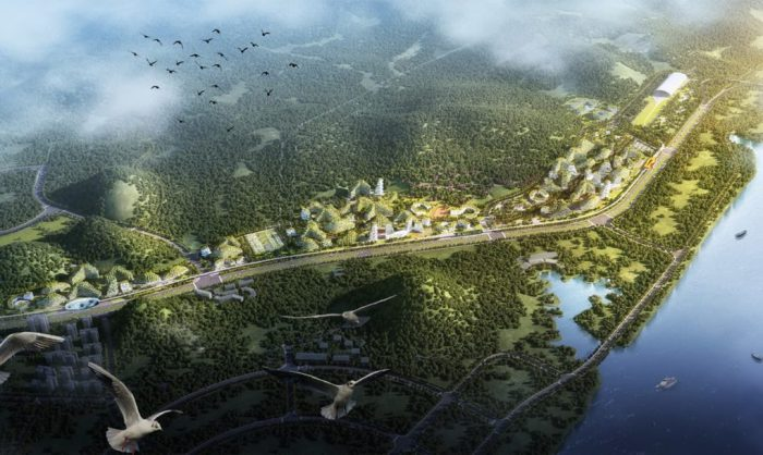forest city 2