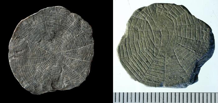vasagard cobweb stones