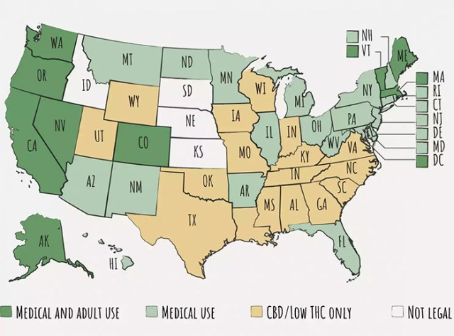 cannabis quiz map
