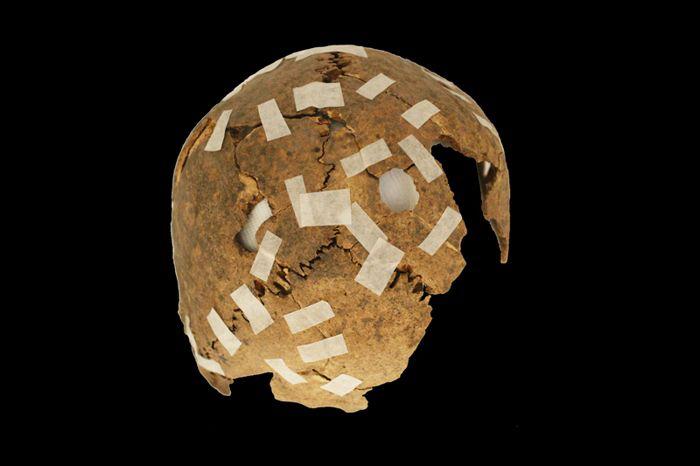 016 inca trophy skull 1