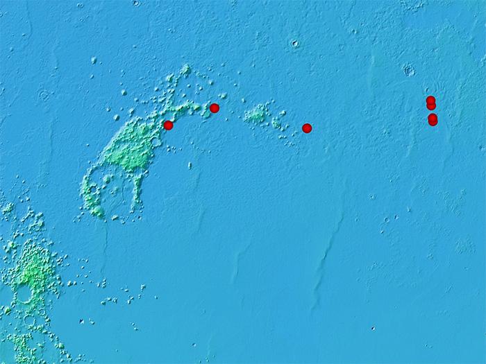 starship scouting sites mars bi 2