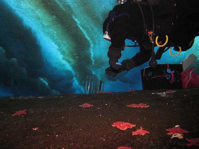 metano nas geleiras