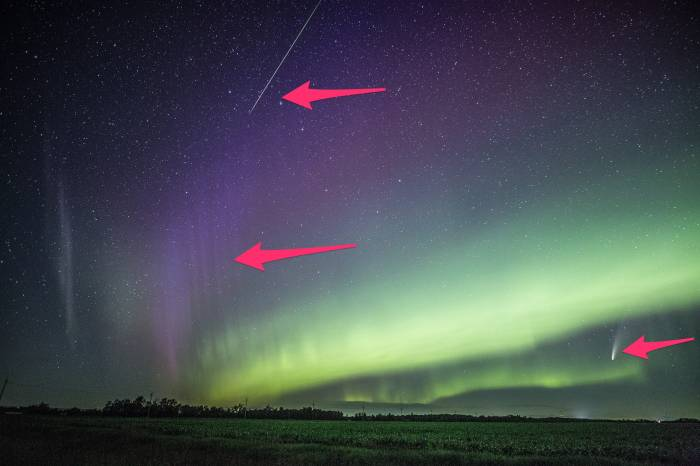 Arrows point to the meteor (top), STEVE (left), and Comet Neowise. (Donna Lach)