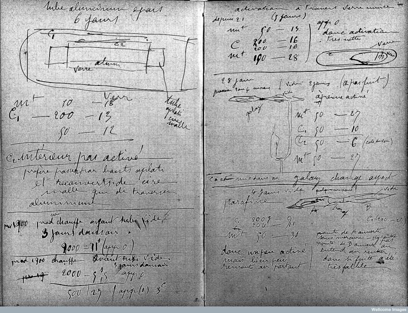 Catatan Kecil: Buku Catatan Radioaktif Marie Curie - Pe Jung Labs