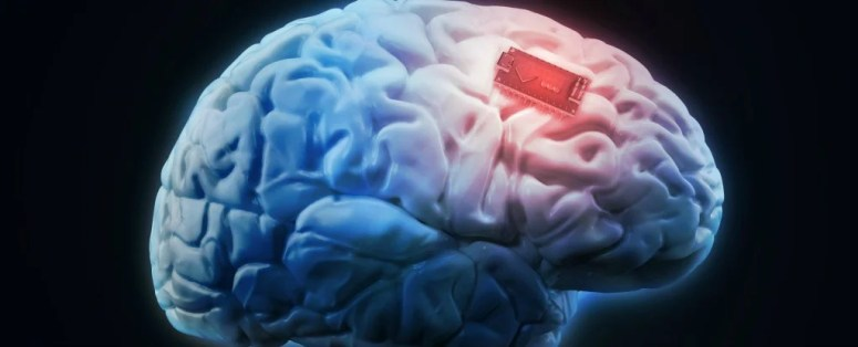 For The First Time Ever Scientists Have Boosted Human Memory With ...
