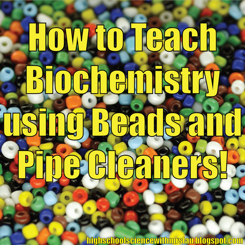Hands On Biochemistry Beads Pipe Cleaners And The