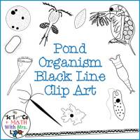 Pond Organism Clipart