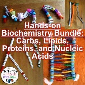 Hands on Biochemistry Activity