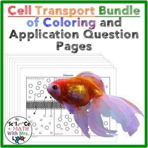 Cell Transport Unit
