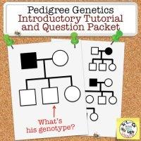 Pedigree Genetics Basic Lesson