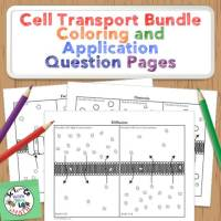 Cell Transport Unit Coloring Activities
