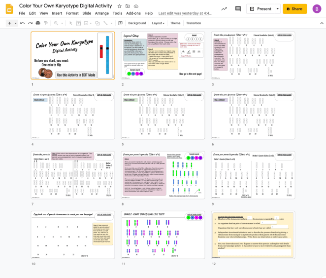 Color Your Own Karyotype Digital Pages for Google Slides to help students understand independent assortment