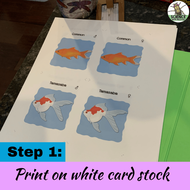 Print your own card games on card stock
