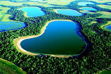 The Pantanal, which covers more than 77,000 square miles in Brazil, is considered one of Earths richest ecosystems. It is a landscape of swamps, seasonally flooded grasslands and woodlands, and different types of forest