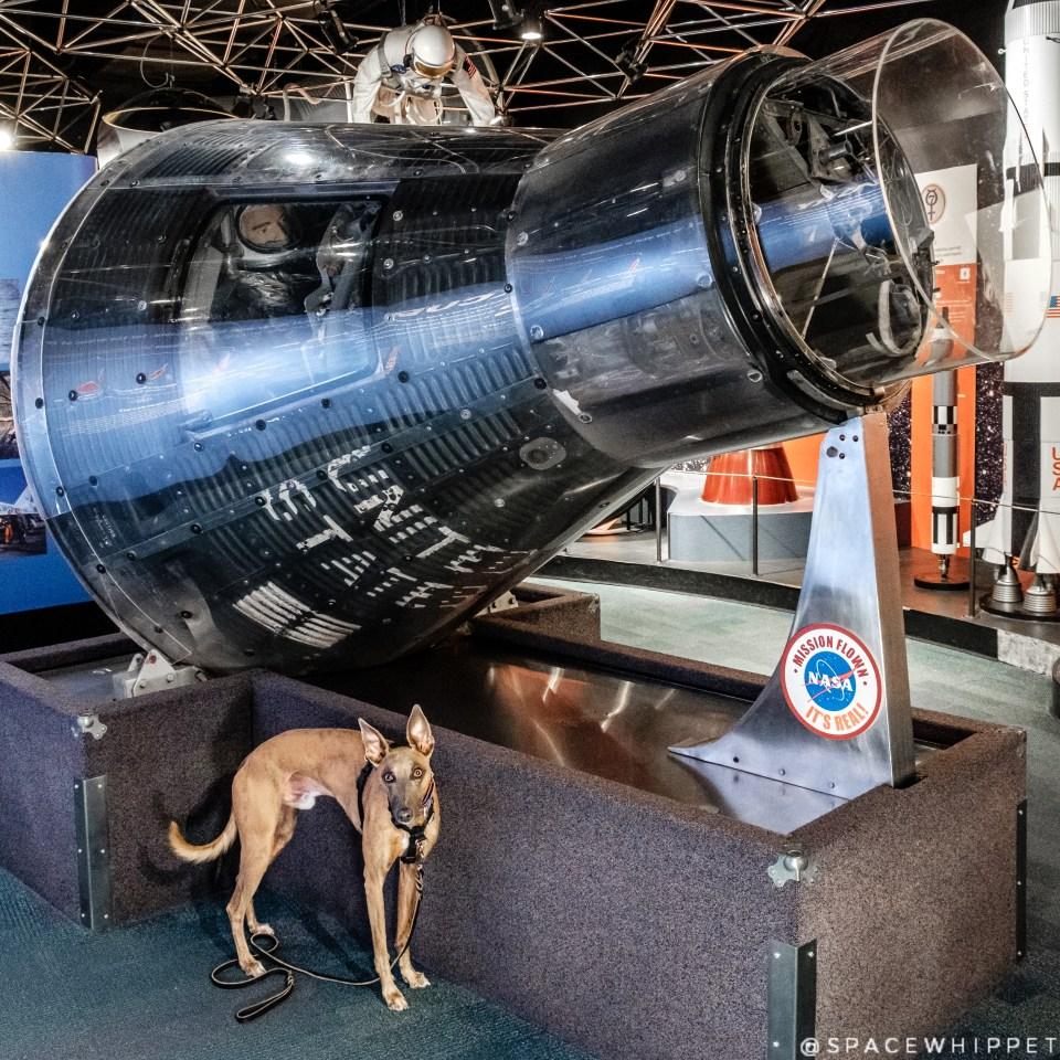 "Kuiper poses with ""Aurora,"" capsule flown on Mercury Atlas 7."