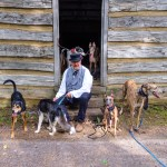 Kuiper poses with three greyhounds, a husky, a hound and a volunteer wearing period garb.