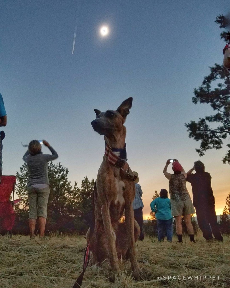 Kuiper poses with a darkened sky as the Great American Eclipse achieves totality.