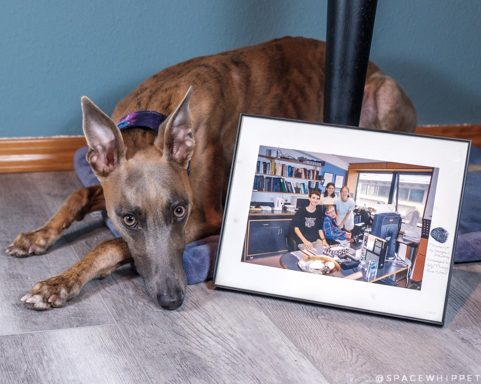 Kuiper rests his head next to a framed photo of Dr. Hawking and three young students. The photograph is autographed with Hawking's thumbprint.