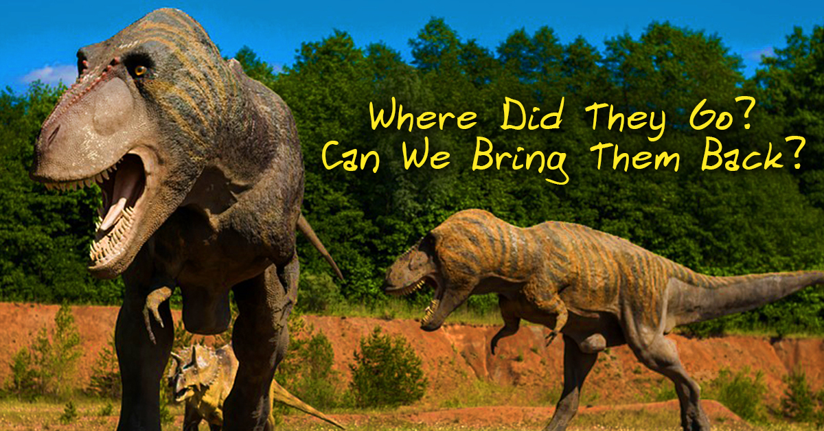 Dinosaurs Why Did They Die And Can Come Back